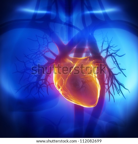 Human heart glowing in chest     **** Also as footage available in my portfolio - stock photo