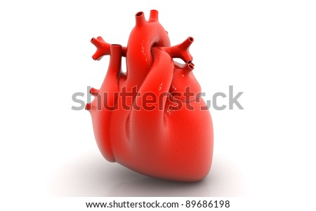 human heart isolated on white background - stock photo