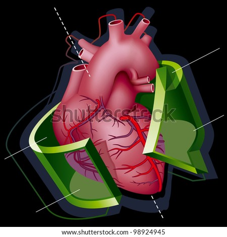 Human Heart with Axes and Green Transparent Arrow around it on Black Background. Rasterized Version - stock photo