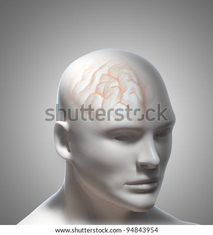 Human Intelligence or psychology concept illustration - stock photo