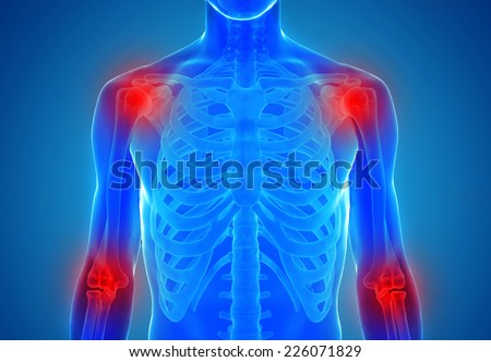 Human joints anatomy - xray view - stock photo