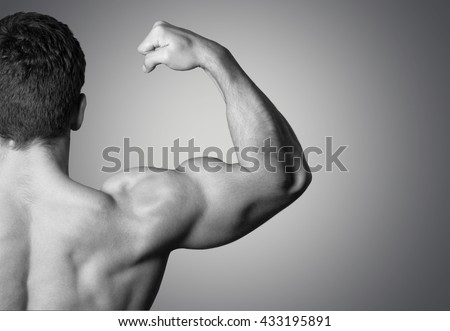 muscle growth stock images, royalty-free images & vectors, Muscles