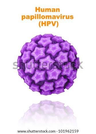 Human papillomavirus (HPV).   Raster version. - stock photo