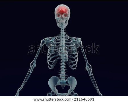 Human red brain X ray in black background - stock photo