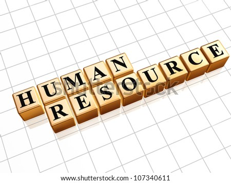 Human resource 3d golden boxes with text - stock photo