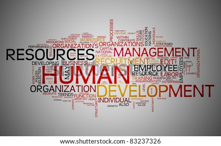 Human resources development concept in word tag cloud - stock photo
