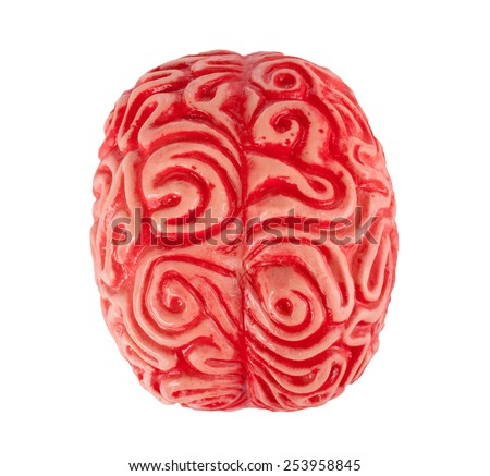 Human rubber brain isolated on white background. - stock photo