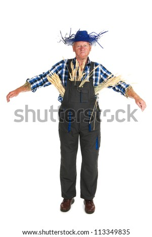 Human scarecrow isolated over white background - stock photo