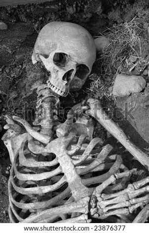 Human skeleton in an ancient grave. - stock photo