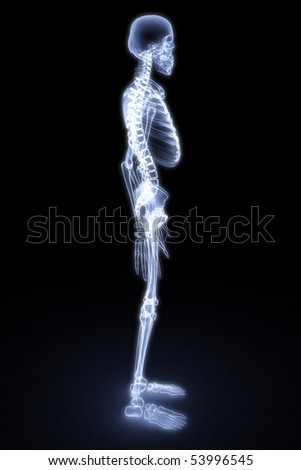 human skeleton under the X-rays. 3d render - stock photo