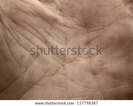 human skin background (hand)