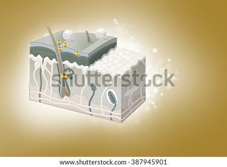 Human skin layers and zoom of Nano cream absorption, glowing on golden background.  - stock photo