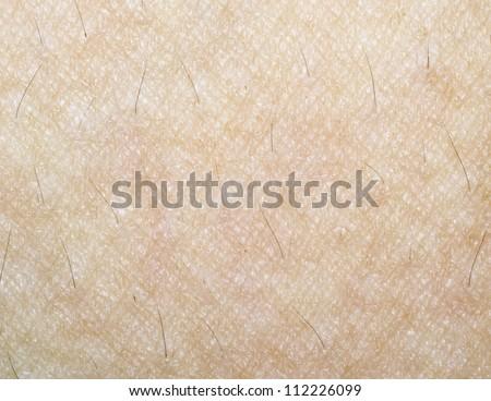 Human Skin Texture - stock photo
