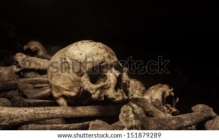 Human skull and bones lying in a heap