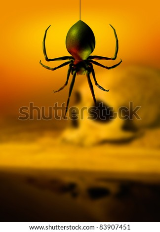 Human skull in background with a black widow spider dangling down in the foreground.