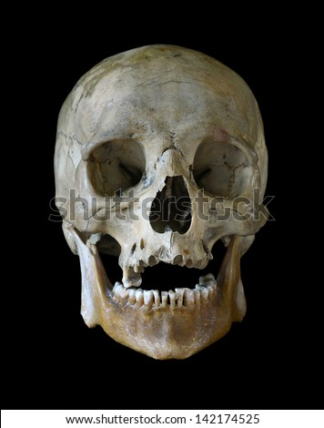 Human skull isolated on a black background. - stock photo