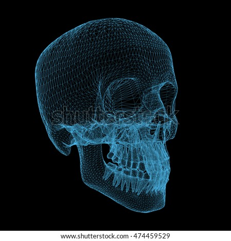 human skull isolated on black background, 3d render