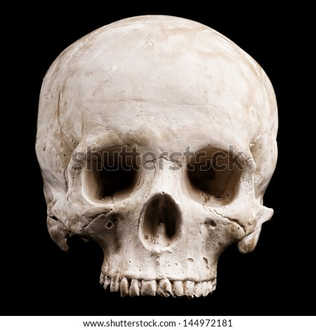 human skull model isolated on black background - stock photo