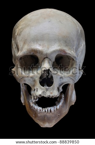 Human skull on a black background. - stock photo