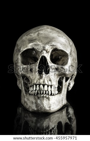 human skull on isolated black background