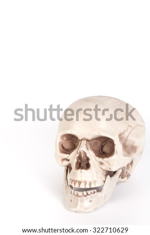 Human skull on isolated white background