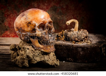 Human skull on old wood background, still life