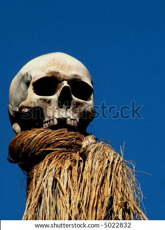 Human Skull on Pike against bright blue sky - stock photo
