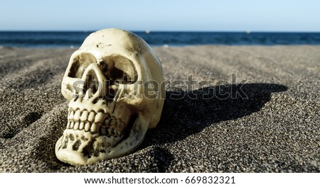 Human Skull on the Sand Beach near Ocean