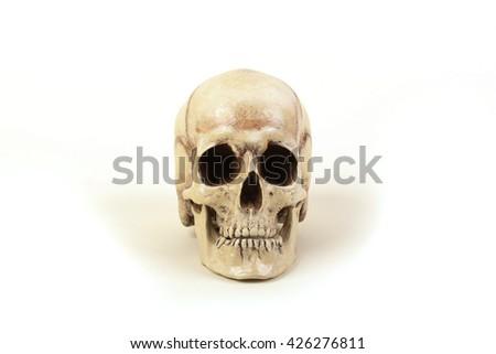 Human skull on white background - stock photo