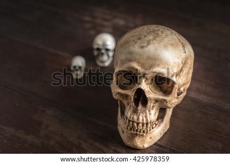 human skull on wooden table, horror halloween concept, still life style - stock photo