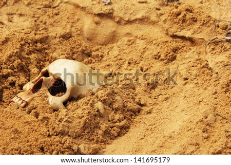 human skull partially buried in the sand - stock photo