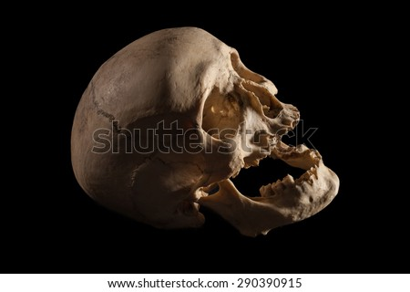 Human Skull with black background - stock photo