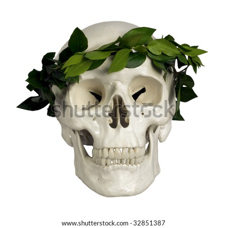 human skull with laurels on white background