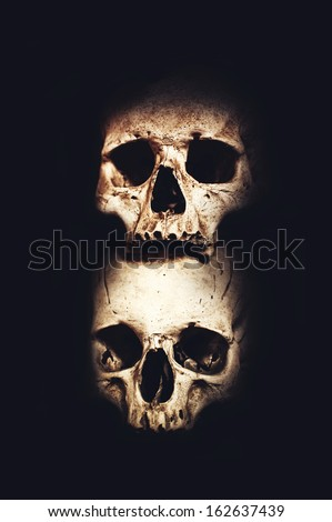 Human skulls and bones over dark background
