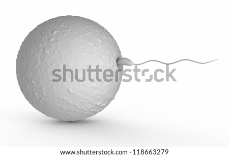 human sperm - stock photo