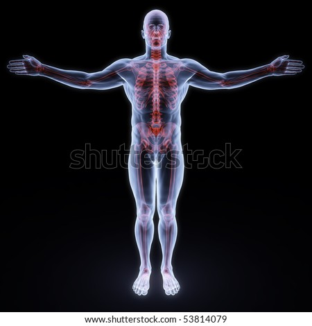 human x-ray with red sceleton - stock photo