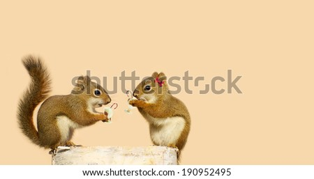 Humorous image of a pair of squirrels drinking egg nog with candy canes at Christmas while perched on a birch log, with copy space.  - stock photo