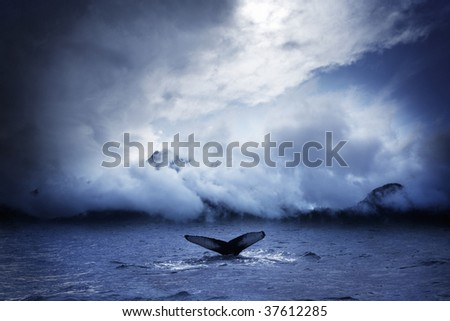 humpback whale deep diving - stock photo