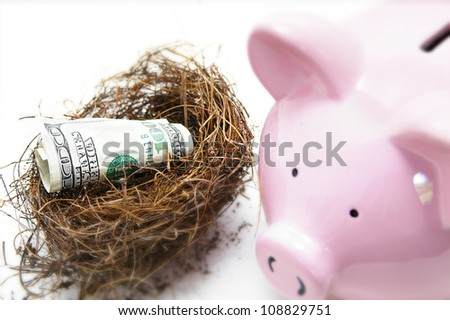 hundred dollar bill in a nest, with piggy bank - stock photo
