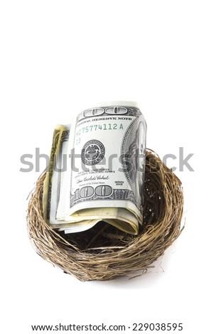 Hundred dollar bills inside a bird's nest, isolated on white background - stock photo