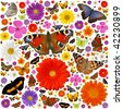 Hundreds of colored butterflies and blooms isolated on white - stock photo