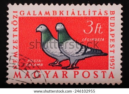 Hungari - Circa 1957: Postage stamp printed in Budapest shows image of two doves on a red background - philately themes animals - stock photo