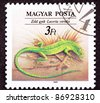 HUNGARY - CIRCA 1989:  A stamp printed in Hungary shows an European Green Lizard, Lacerta viridis in a tuft of grass, circa 1989. - stock photo