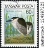 "HUNGARY - CIRCA 1980: A stamp printed in Hungary shows Black-crowned night heron, with the inscription ""Nycticorax nycticorax"", from the series ""European Nature Protection Year"", circa 1980 - stock photo"