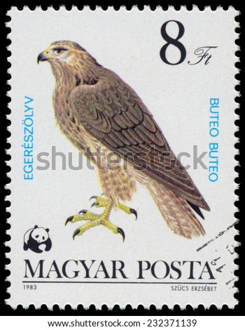 """HUNGARY - CIRCA 1983: A stamp printed in Hungary shows common buzzard (Buteo buteo), from the series """"Bird of prey"""", circa 1983  - stock photo"""