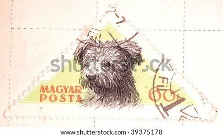 HUNGARY - CIRCA 1958: A stamp printed in Hungary shows image of a dog, series, circa 1958