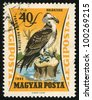 HUNGARY - CIRCA 1962: A stamp printed in Hungary shows image of an osprey, series, circa 1962. - stock photo