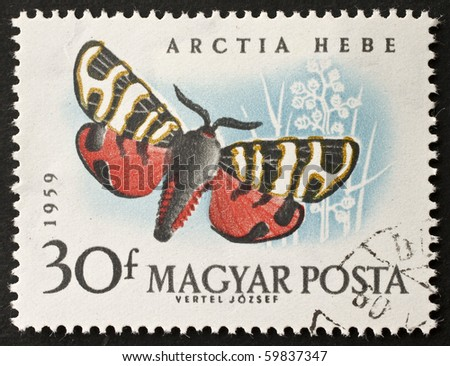 HUNGARY - CIRCA 1959: a stamp printed in Hungary shows image of Arctia Hebe (Arctia Festiva), a moth, found in central and southern Europe, central Asia and north Africa. Hungary, circa 1959
