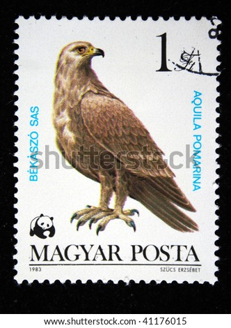HUNGARY - CIRCA 1983: A Stamp printed in Hungary shows Lesser Spotted Eagle - Aquila pomarina, circa 1983