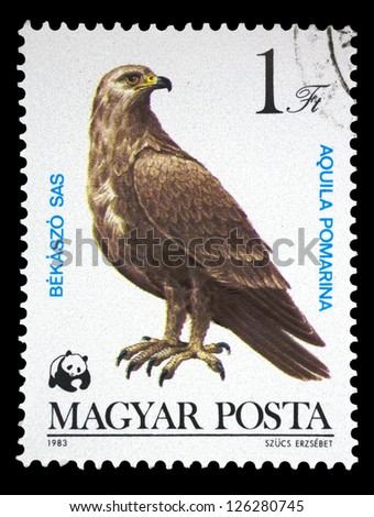 """HUNGARY - CIRCA 1983: A stamp printed in Hungary shows Lesser Spotted Eagle (Aquila pomarina), with the same inscription, from the series """"Bird of prey"""", circa 1983 - stock photo"""